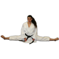 Karate Ontario Approved Elite Uniform